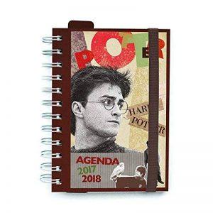Grupo Erik Editores Harry Potter–Agenda Scolaire 2017/20181 page par Jour (français non garanti) de la marque Grupo Erik Editores image 0 produit