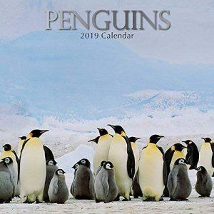 pingouins 2019carré Calendrier mural de la marque The Gifted Stationery Co Ltd. image 0 produit