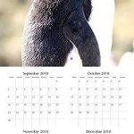 pingouins 2019carré Calendrier mural de la marque The Gifted Stationery Co Ltd. image 2 produit
