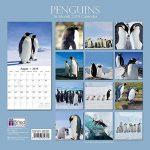 pingouins 2019carré Calendrier mural de la marque The Gifted Stationery Co Ltd. image 3 produit