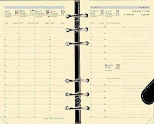 QUO VADIS - Recharge pour Organiseur Timer 17 Prestige, 16 mois : Août 2018 à Déc 2019 de la marque Quo Vadis image 0 produit